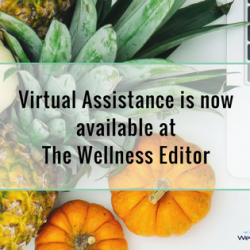 VA for health wellness business